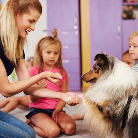 ¿Porqué y para qué educar a tu mascota?